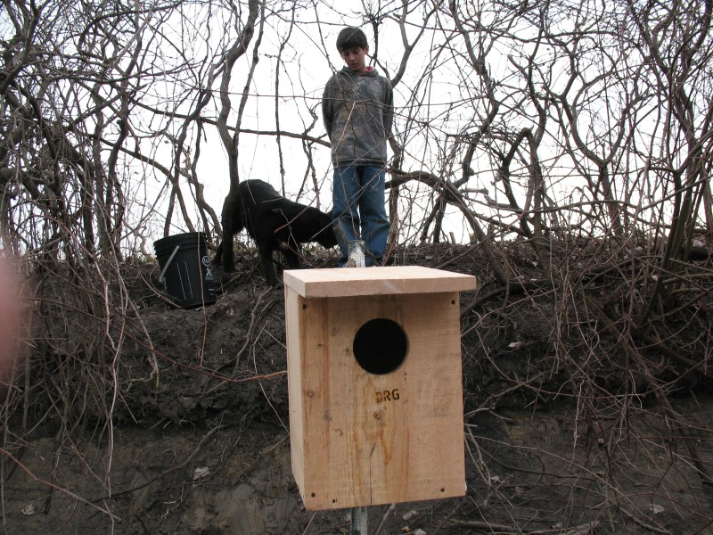 2007 Spring Woodduck Boxes